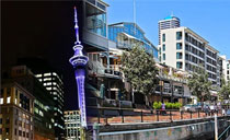 Amazing Auckland One Day Tour