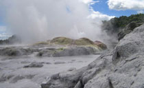 Day tour to Rotorua & Waitomo from Auckland